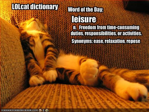 an introduction and a definition of leisure Term leisure definition: the portion of time workers and other people spend not being compensative for work performed when they actively engaged in the.