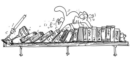 Simon's cat bookcase